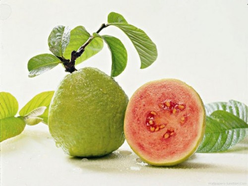 The-Amazing-Health-Benefits-Of-Guava-Leaves-You-Didnt-Know-About